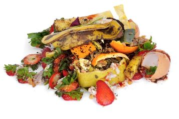 food_waste_us_news