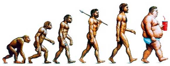 the-evolution-of-obesity